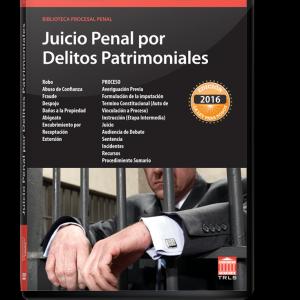 JUICIO-PENAL-POR-DELITOS-PATRIMONIALES