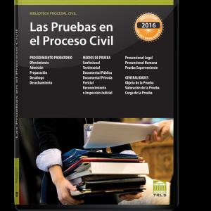 LAS-PRUEBAS-EN-EL-PROCESO-CIVIL